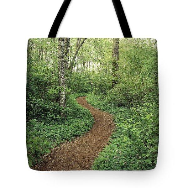 Path Through Woods Tote Bag by Bert Klassen