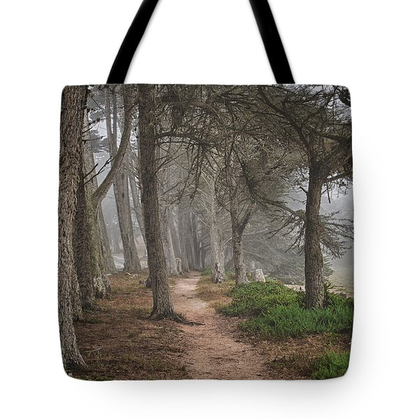 Pathway Tote Bag by Alice Cahill