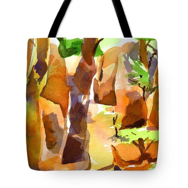 Pathway Through Elephant Rocks 1b Tote Bag by Kip DeVore