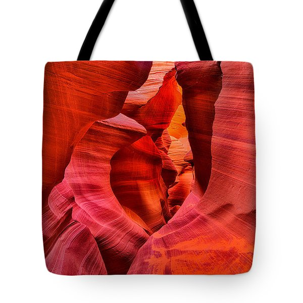 Pathway To Beauty Tote Bag
