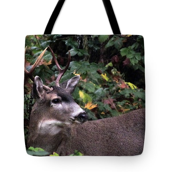 Tote Bag featuring the photograph Patriarch by I'ina Van Lawick