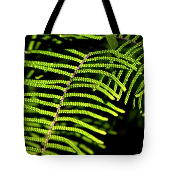 Tote Bag featuring the photograph Pauched Coral Fern by Miroslava Jurcik