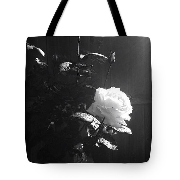 Peace In The Morning Tote Bag by Vonda Lawson-Rosa