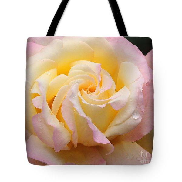 Peace Rose Tote Bag by Olivia Hardwicke
