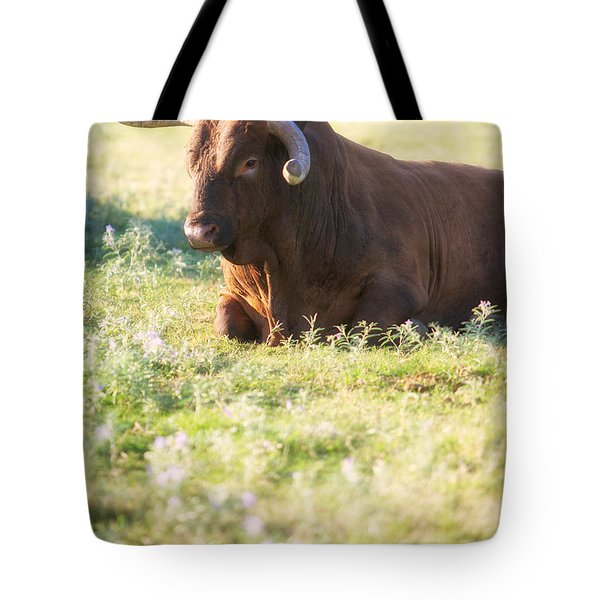 Tote Bag featuring the photograph Peaceful by Erika Weber