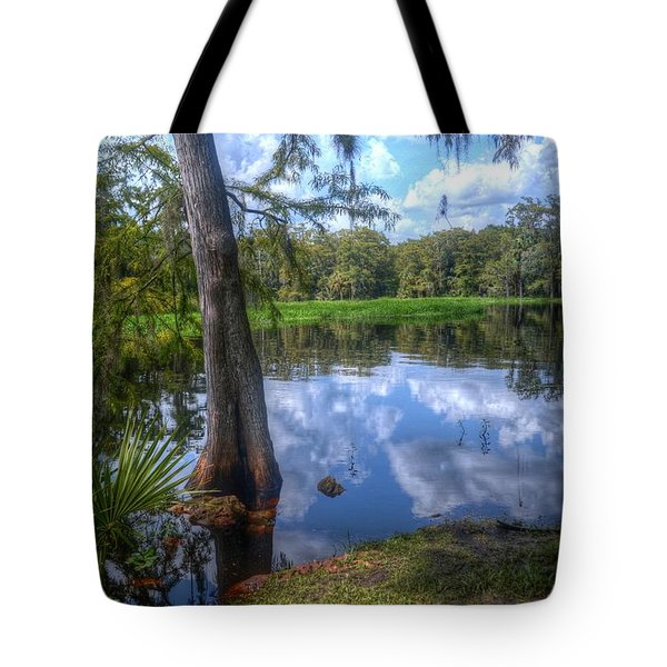 Peaceful Florida Tote Bag by Timothy Lowry