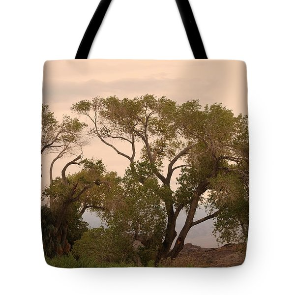 Peaceful Tote Bag by Kathleen Struckle