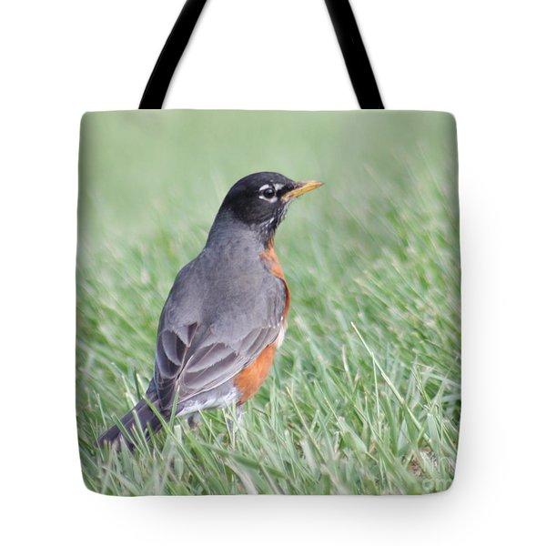 Peaceful Robin Tote Bag