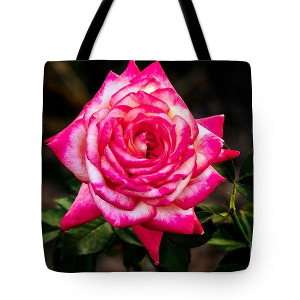Peaceful Rose Tote Bag