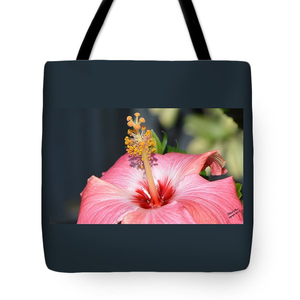 Peaceful Tingles - Signed Tote Bag