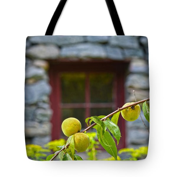 Peach Tree At The Old Mill Of Guilford Tote Bag by Sandi OReilly