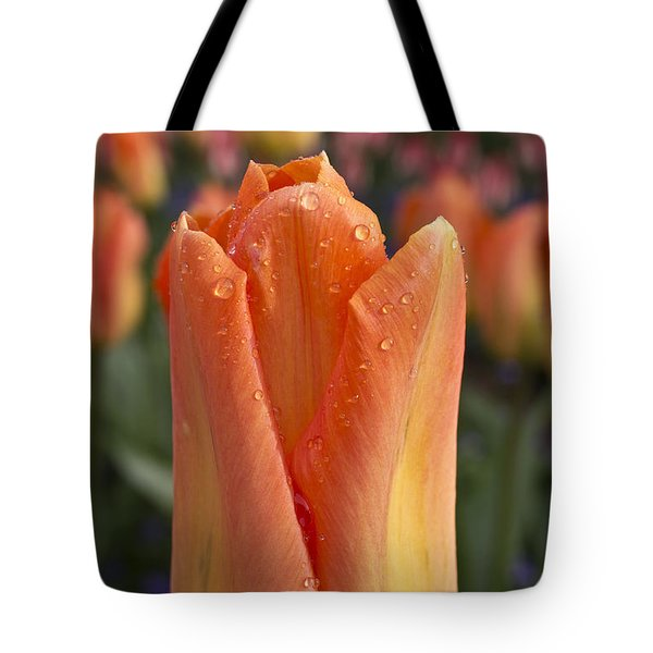 Peach Tulip Tote Bag