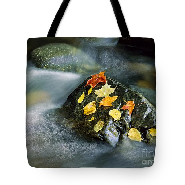 Tote Bag featuring the photograph Peacham Brook In Fall by Alan L Graham