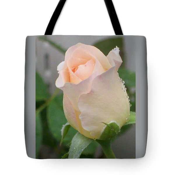 Tote Bag featuring the photograph Fragile Peach Rose Bud by Belinda Lee
