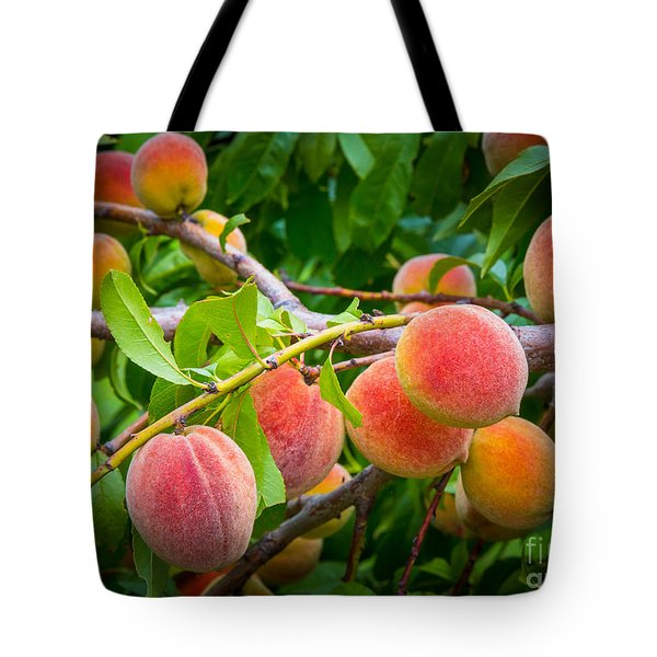 Peaches Tote Bag by Inge Johnsson