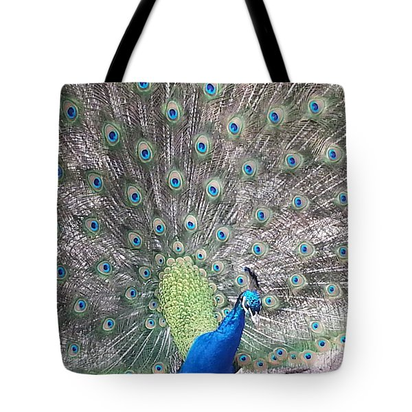 Tote Bag featuring the photograph Peacock Bow by Caryl J Bohn
