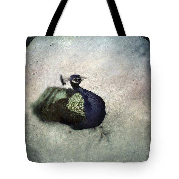 Peacock Tote Bag by Bradley R Youngberg