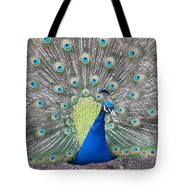 Tote Bag featuring the photograph Peacock by Caryl J Bohn