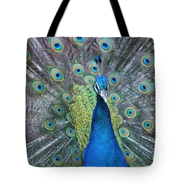 Tote Bag featuring the photograph Peacock by Elizabeth Budd