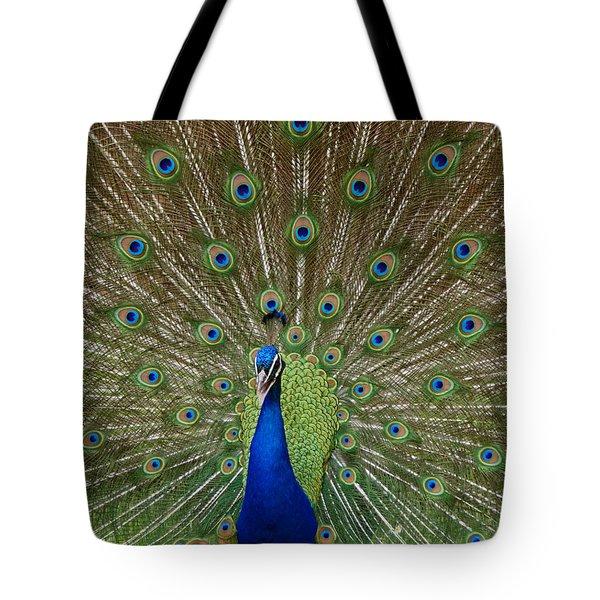 Peacock Tote Bag by Ernie Echols