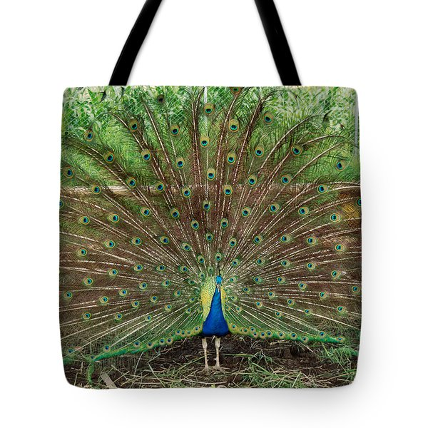 Tote Bag featuring the photograph Peacock Full Glory by Eva Kaufman