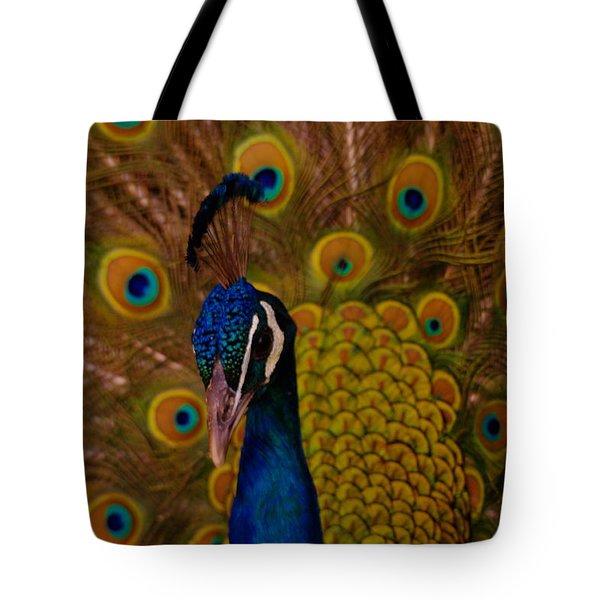 Peacock Tote Bag by Jeff Swan