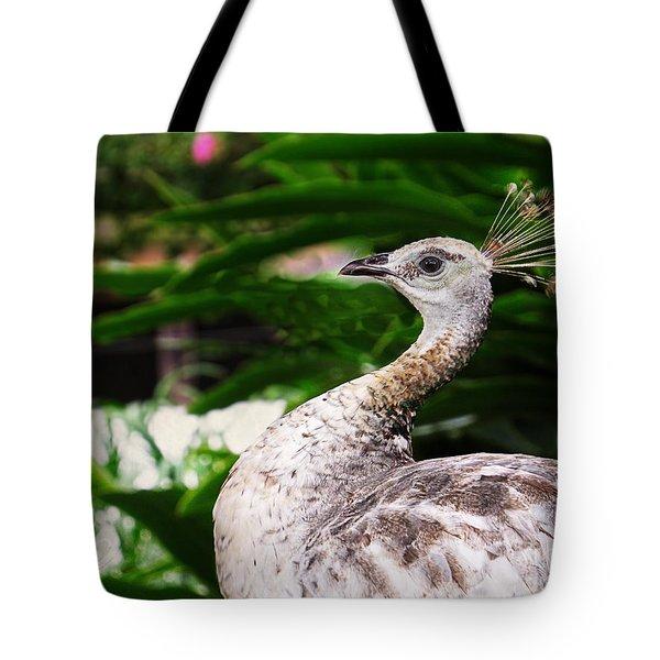 Peacock Portrait Tote Bag by Ella Kaye Dickey