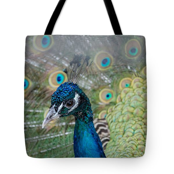 Peacock Portrait Tote Bag
