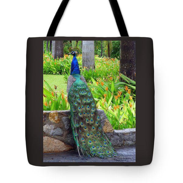 Tote Bag featuring the photograph Peacock Posing by Jim Whalen