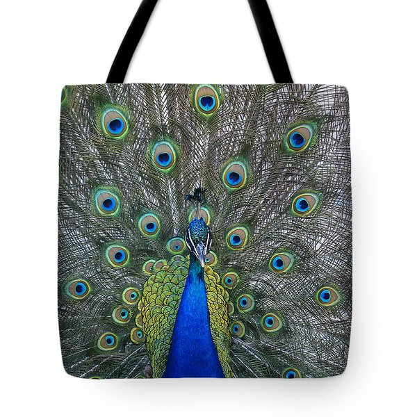 Peacock Tote Bag by Steven Ralser