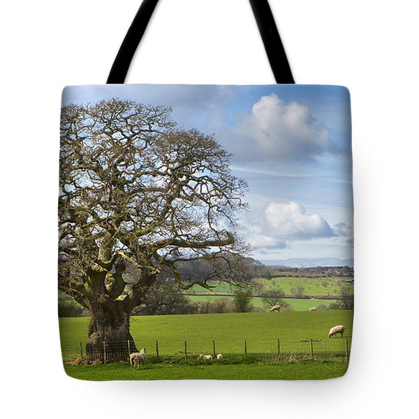 Peak District Tree Tote Bag