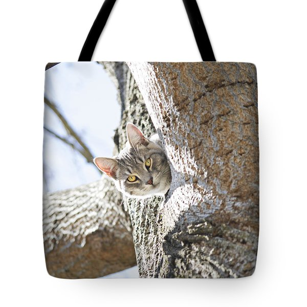 Peaking Cat Tote Bag