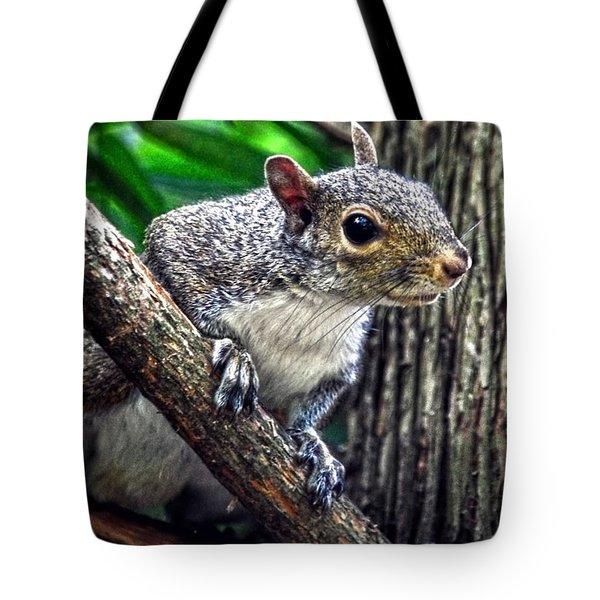 Peanut? Treat? Tote Bag by Sandi OReilly