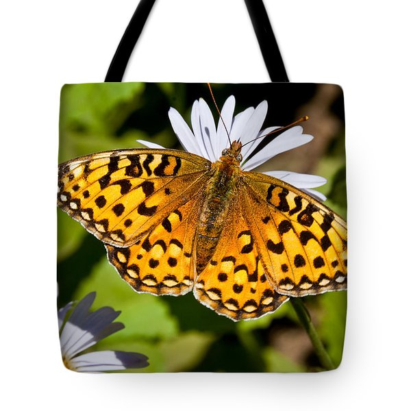 Tote Bag featuring the photograph Pearl Border Fritillary Butterfly On An Aster Bloom by Jeff Goulden