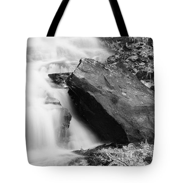 Tote Bag featuring the photograph Pearson's Falls November 15 B by Joseph C Hinson Photography