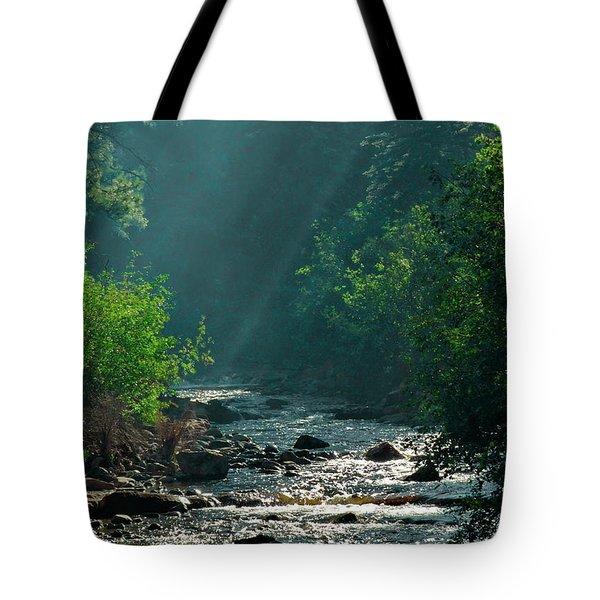 Pecos River Spring Tote Bag