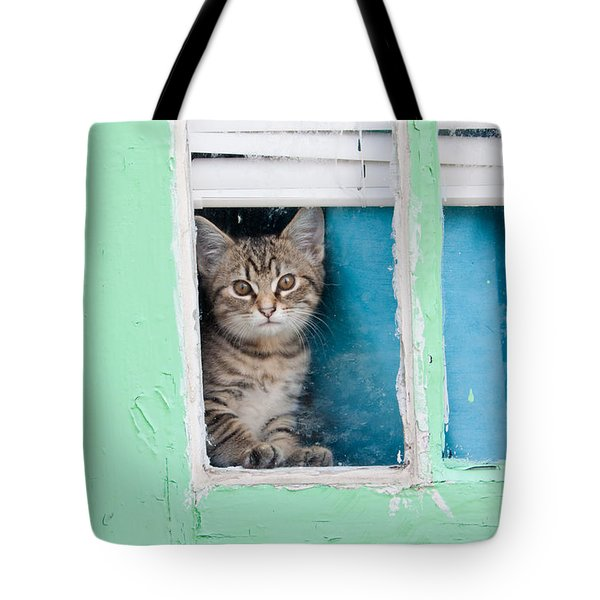 Peek-a-boo Tote Bag by Jean Haynes