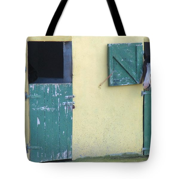 Peekaboo Tote Bag by Suzanne Oesterling