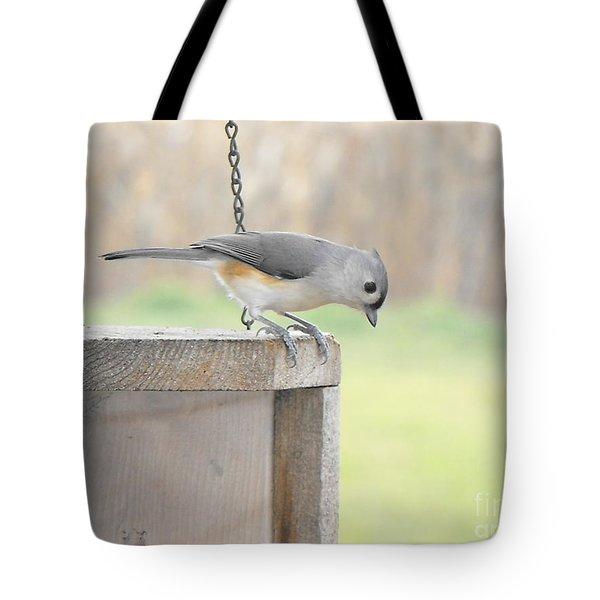 Peeking Chickadee Tote Bag