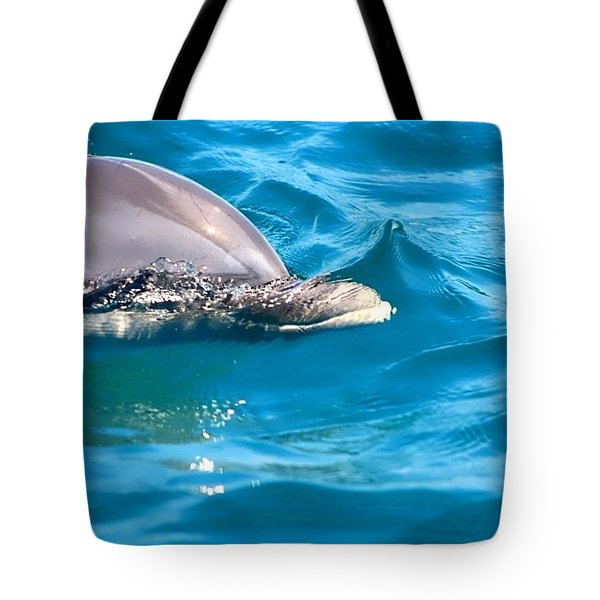 Peeking Dolphin Tote Bag by Debra Forand