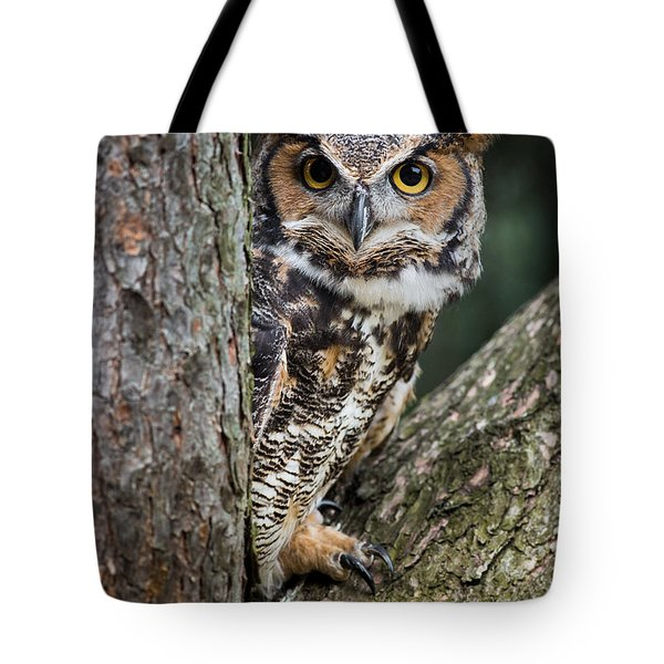 Peering Out Tote Bag