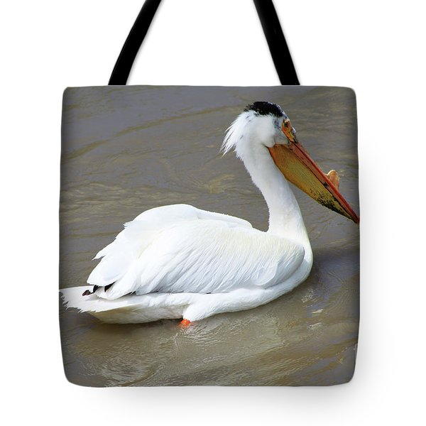 Tote Bag featuring the photograph Pelecanus Eerythrorhynchos by Alyce Taylor