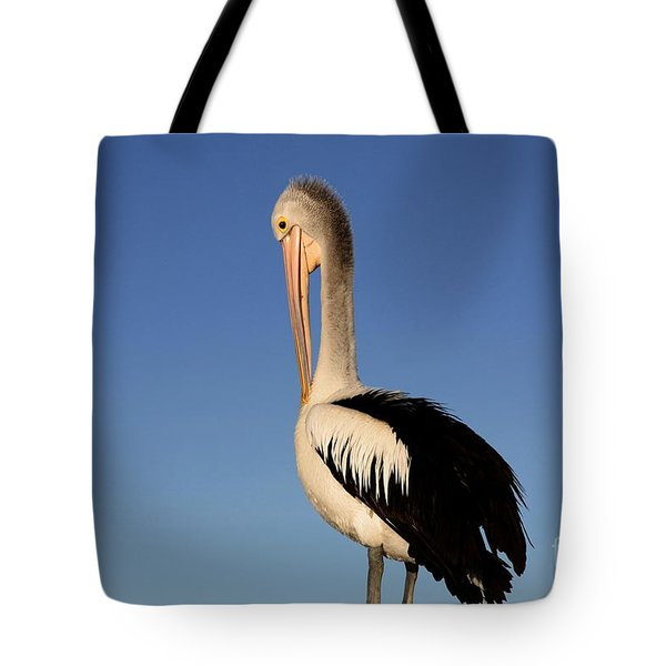 Pelican Alone Tote Bag