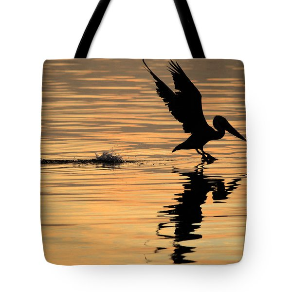 Pelican At Sunrise Tote Bag by Leticia Latocki