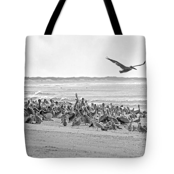 Pelican Convention  Tote Bag by Betsy Knapp