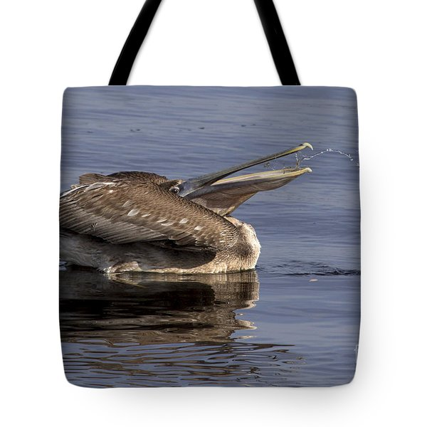 Pelican Fountain  Tote Bag by Meg Rousher