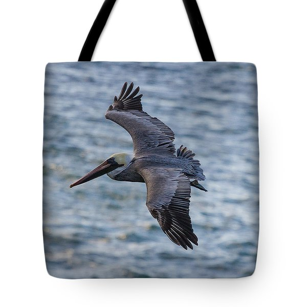 Tote Bag featuring the photograph Pelican In Flight by Sonny Marcyan