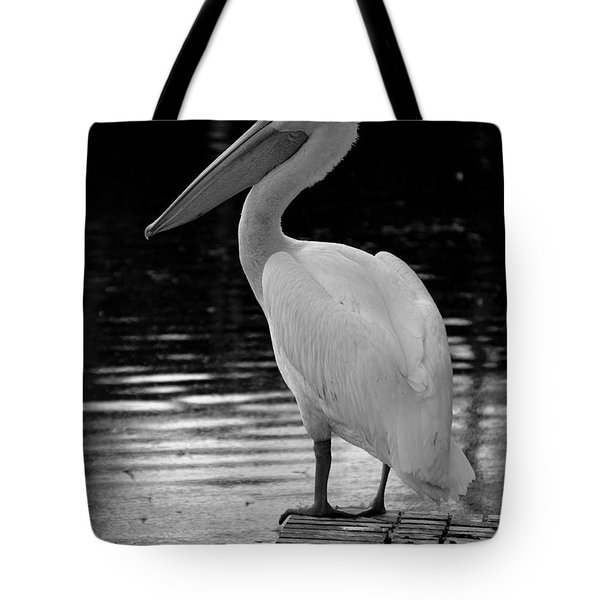 Pelican In The Dark Tote Bag