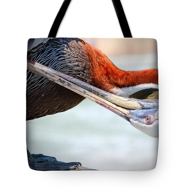 Pelican Itch Tote Bag by Cynthia Guinn