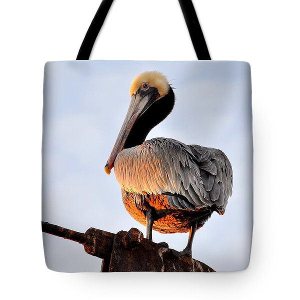 Pelican Looking Back Tote Bag